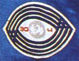 Le rare badge Mir EO-4 Tm07eo04detail